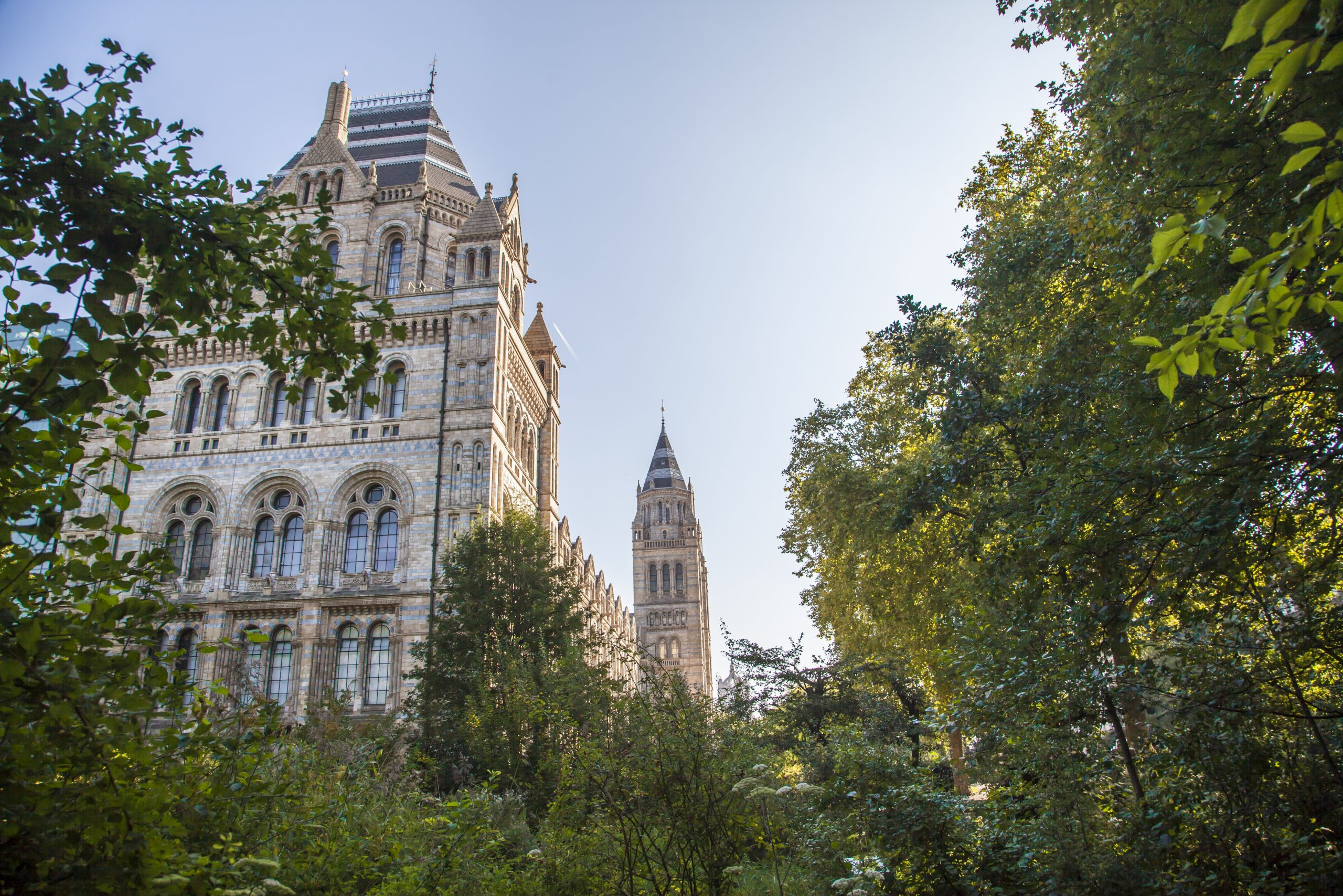 Nationals such as the Natural History Museum in London have been asked to cut executive pay