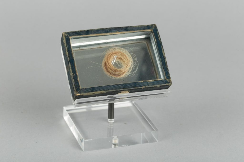 A lock of hair on display