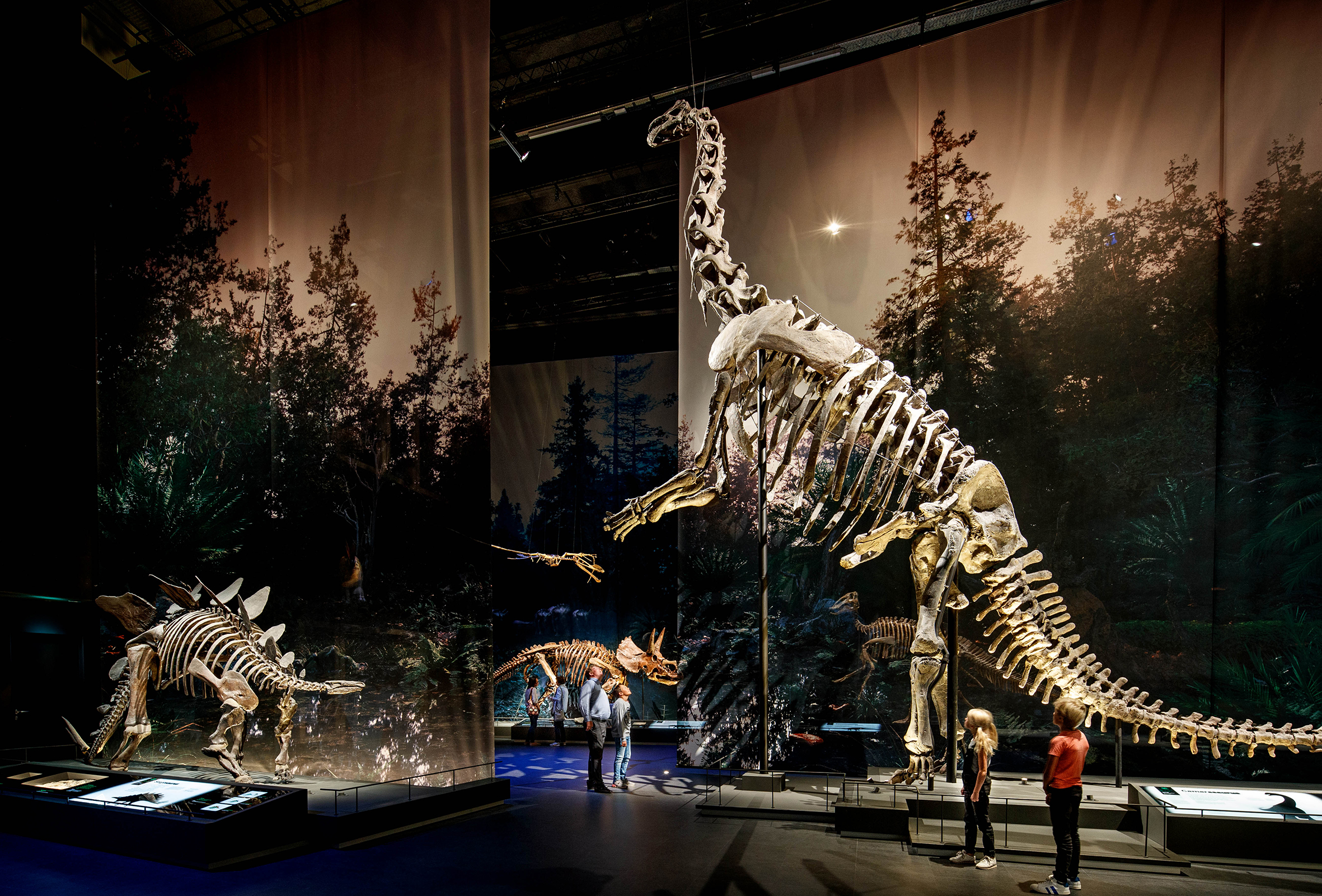 The 2021 European Museum of the Year was won by the Naturalis Biodiversity Center in Leiden, Netherlands