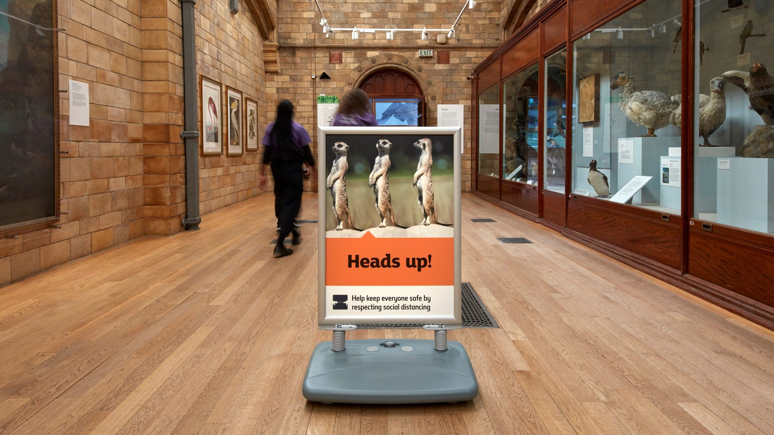 Institutions such as the Natural History Museum are continuing to limit visitor numbers